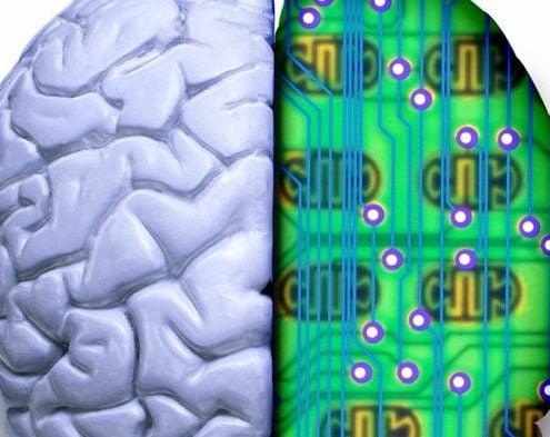 Brainchips